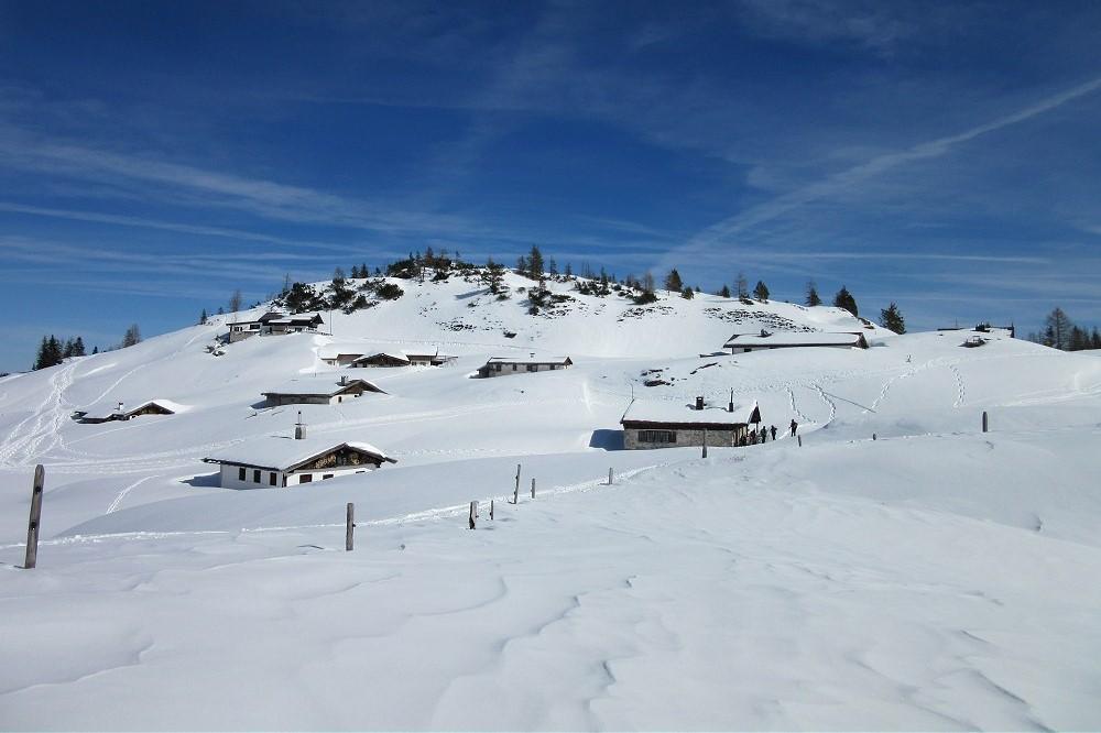 Schneelandschaften erkunden